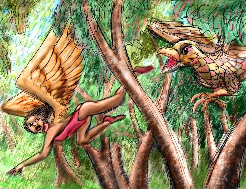Dream: A huge hawk chases a winged ballerina through a eucalyptus grove.