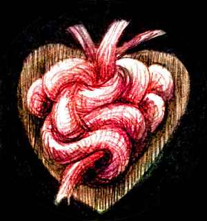 My tangled heart-knot; dream sketch by Wayan.
