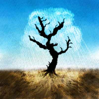 Dream: an unshade tree, all bare black branches, its shadow a pool of sun.